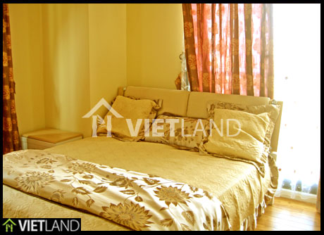Spacious apartment with full and beautuiful furniture for rent in downtown of Ha Noi