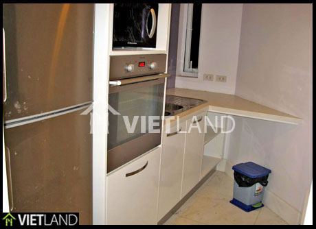 Building Golden Westlake: brand new apartment for rent with 2 beds in Tay Ho district
