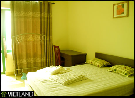 Nice and full furnishing apartment for rent in Kinh Do building, Hai Ba district