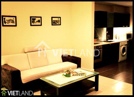 Apartment for rent in Building Pacific Palace, Hoan Kiem district, Ha Noi