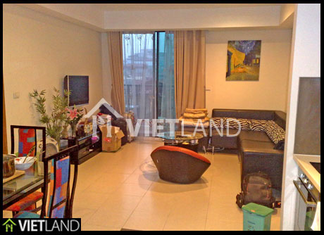 Pacific Palace: One bedroom apartment with full furniture for rent in Ha Noi