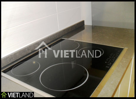 Apartment with 3 bedrooms for rent in Tu Liem district, Ha Noi