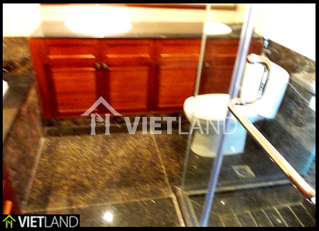 Spacious apartment for rent in VinCom Palace, Mai Hac De street, Hai Ba Trung district, Ha Noi