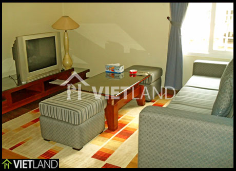 Serviced flat near Ha Noi Opera House for rent