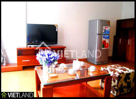 Fully serviced apartment for rent in Lieu Giai street, Ba Dinh district, Ha Noi