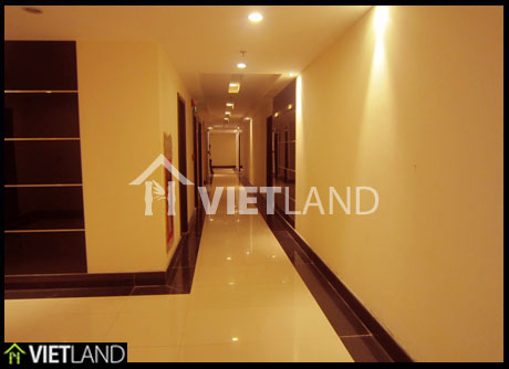 Charming design – brand new apartment for rent in Xuan Thuy Cau Giay district, Ha Noi