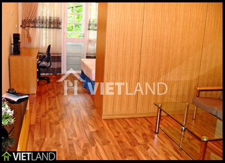 Hai Ba district located apartment with serviced for rent in Ha Noi