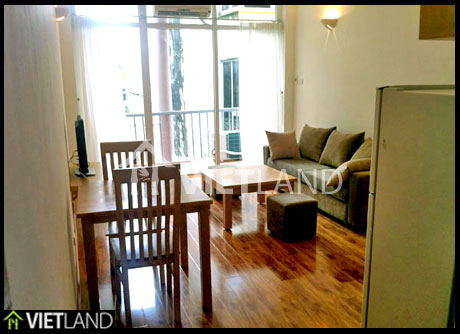 Serviced apartment with 1 bedroom for rent in downtown of Hai Ba Trung district, Ha Noi