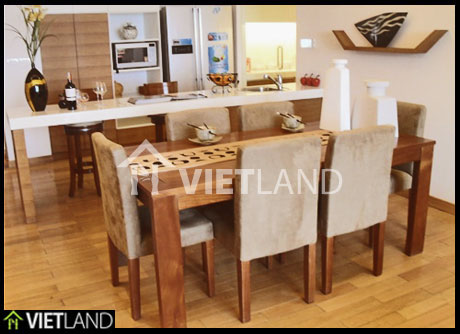 Dolphin Plaza: great serviced apartment for rent in Tran Binh street, Cau Giay district, Ha Noi