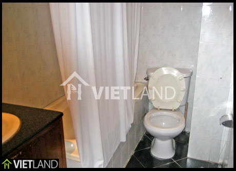 2 beds apartment for rent in a serviced building located near VinCom Towers, Ha Noi