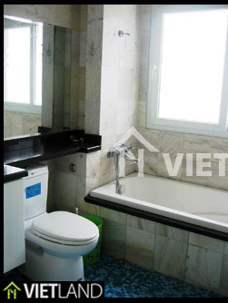 Right by the VinCom Towers serviced flat for rent in Hai Ba district, Ha Noi