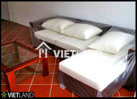 Truc Bach area: serviced apartment for rent in Ha Noi