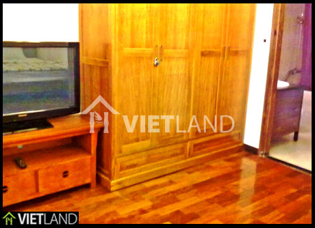 Studio for rent located near Thien Quang lake, Hai Ba district in Ha Noi